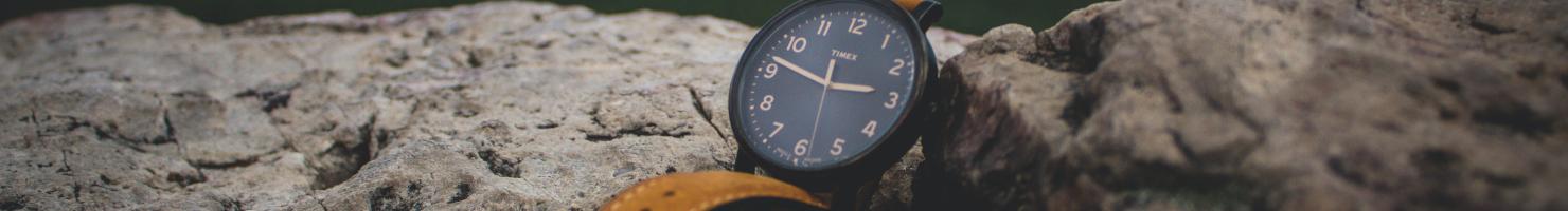 Armbanduhr in der Uhrenwelt